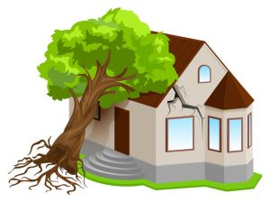 roofing companies in Pensacola can help with roof damage insurance claims